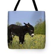 Donkey Foal Tote Bag