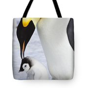 Emperor Penguin And Chick Tote Bag