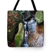 4 Faces In The Water Tote Bag