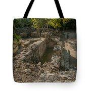 Grupo Coba At The Coba Ruins  Tote Bag
