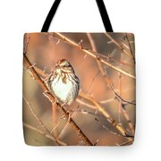 House Finch Tiny Bird Perched On A Tree Tote Bag
