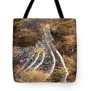 4. Ice Prismatics In Grass 1, Loch Tulla,  Tote Bag