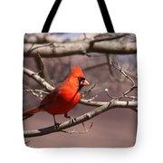 Img_0001 - Northern Cardinal Tote Bag