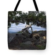 Indian River Lagoon Tote Bag