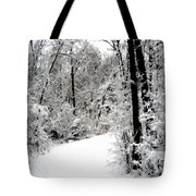 Landscape Framed Tote Bag