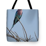Lilac Breasted Roller On The Hunt Tote Bag