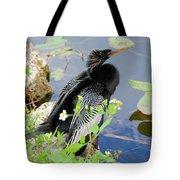 Male Anhinga Tote Bag