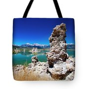 Mono Lake Tufa Tote Bag