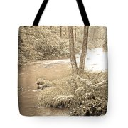 Mud Run Pocono Mountain Stream Pennsylvania Tote Bag