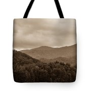 Nature Landscapes Around Lake Santeetlah North Carolina Tote Bag