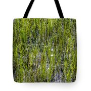 Nature Scenes Around Hunting Island South Carolina Tote Bag