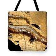 Nauta Palm Foot Salamander Tote Bag