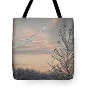 Snowy Owl Glide Tote Bag