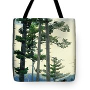 Old Settlers Tote Bag