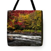 Ontario Autumn Scenery Tote Bag