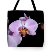 Pink Orchid IIi Tote Bag