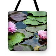 Pink Water Lily Series Tote Bag