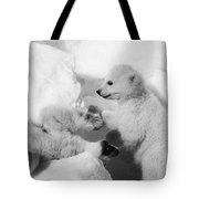 Polar Bear Cubs Tote Bag