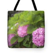 Purple Hydrangea At Rainy Garden In June, Japan Tote Bag