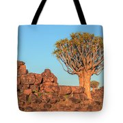 Quiver Tree Forest - Namibia Tote Bag
