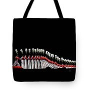Radio City Rockettes New York City Tote Bag