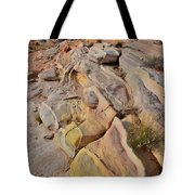 Rainbow Of Color In Valley Of Fire Tote Bag