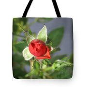 Red Rose Blooming Tote Bag