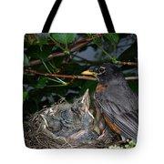 Robin Feeding Its Young Tote Bag