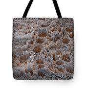Rotten Oak Wood, Sem Tote Bag