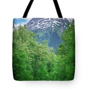 Scenic Train From Skagway To White Pass Alaska Tote Bag