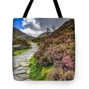Snowdonia National Park - Tote Bag