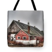 Stands With Dignity Tote Bag