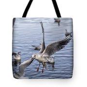 Stover Lake Tote Bag