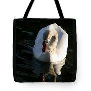 Swan Lake Story Tote Bag
