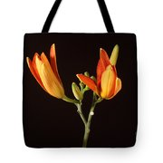 Tiger Lily Flower Opening Part Tote Bag