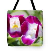 Torenia Named Kauai Magenta Tote Bag