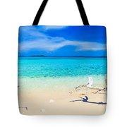 Tropical Beach Malcapuya Tote Bag by MotHaiBaPhoto Prints