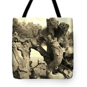 Twisted Driftwood Tote Bag