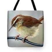 Virginia Wren Tote Bag