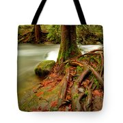 Whatcom Creek Tote Bag
