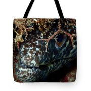 White Spotted Eel Tote Bag
