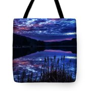 Winter Dawn Tote Bag