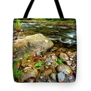 Fall Along Williams River Tote Bag