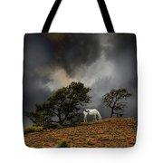4263 Tote Bag