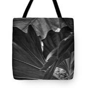 4327- Leaf Black And White Tote Bag
