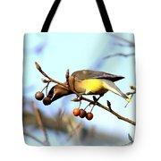 4427 - Cedar Waxwing Tote Bag