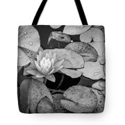 4434- Lily Pads Black And White Tote Bag