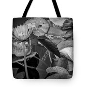 4466- Lily Pads Black And White Tote Bag