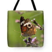 4467 - Butterfly Tote Bag