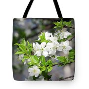 Tree Blossoms Tote Bag